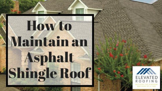 Roofing Repair: How to Maintain Asphalt Roof