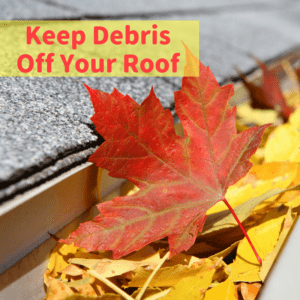 Keep Debris Off Your Roof | Commercial Roofing Dallas | Elevated Roofing