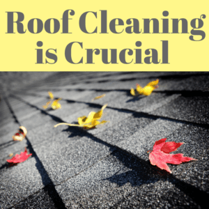 Roof Cleaning is Crucial