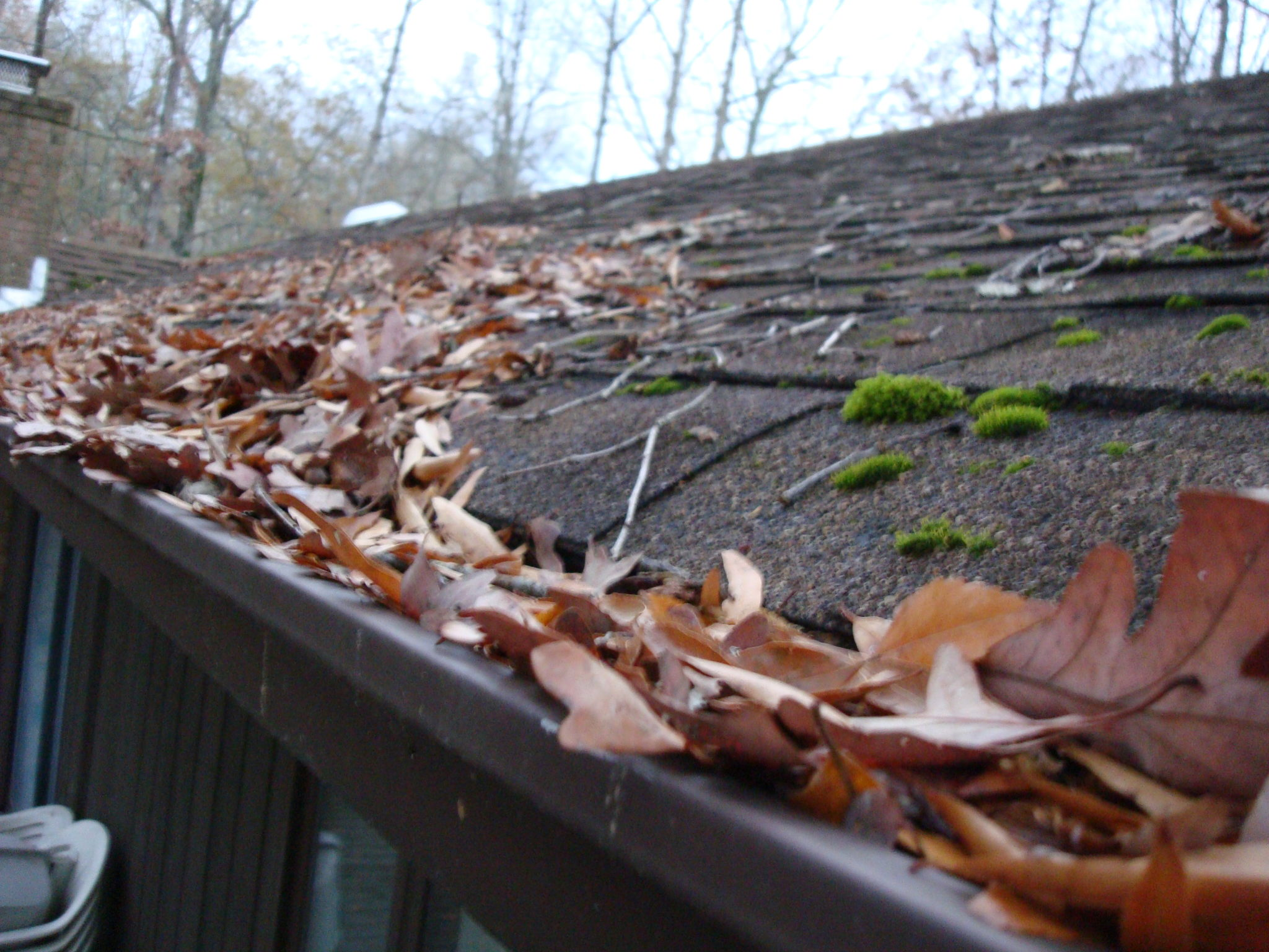 Roof Maintainence - The Importance Of Gutter Cleaning